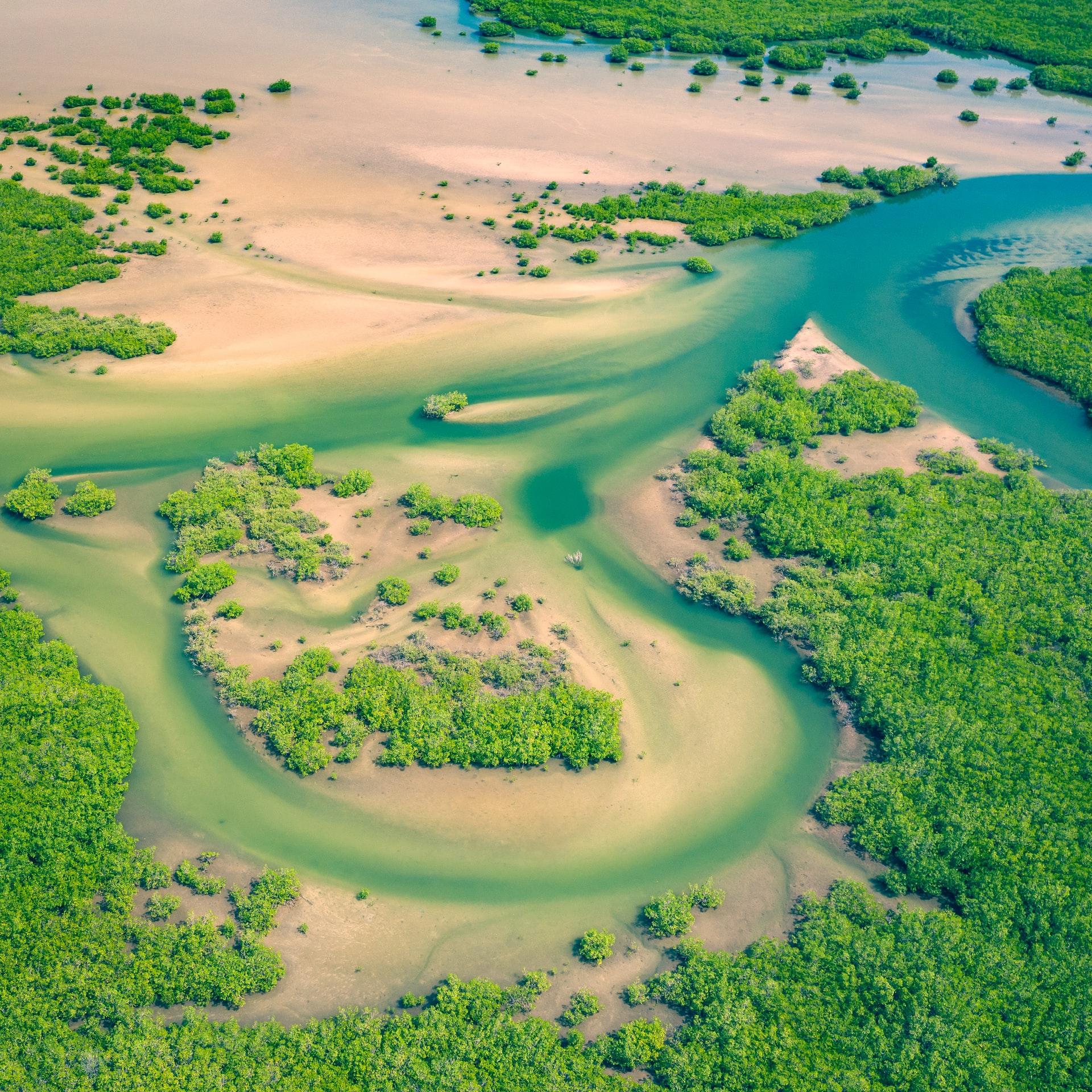 Viaggio in Senegal: perché farlo ora